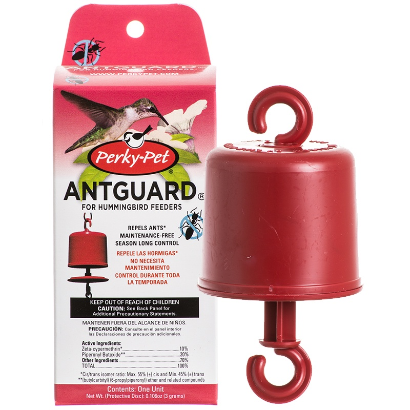 No Water Needed Ant Trap - YardBirds